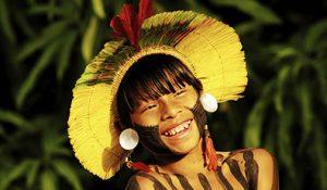 インディオ 熱帯森林保護団体RFJ